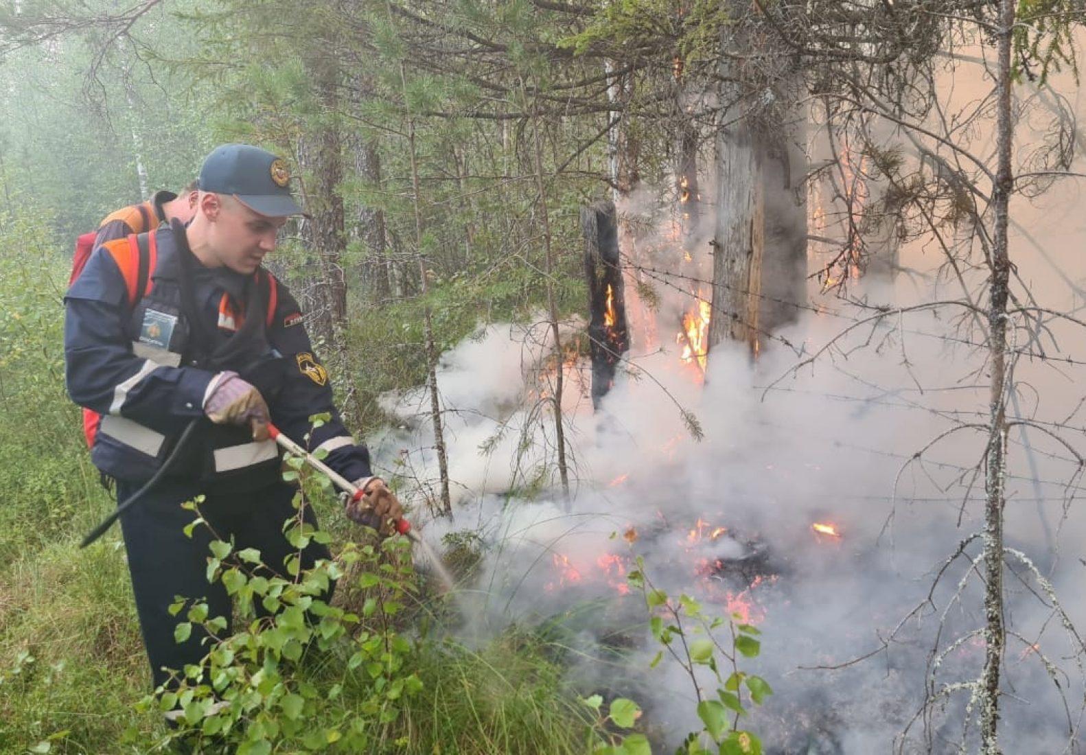 В Карелии из-за масштабных природных пожаров объявлен режим ЧС