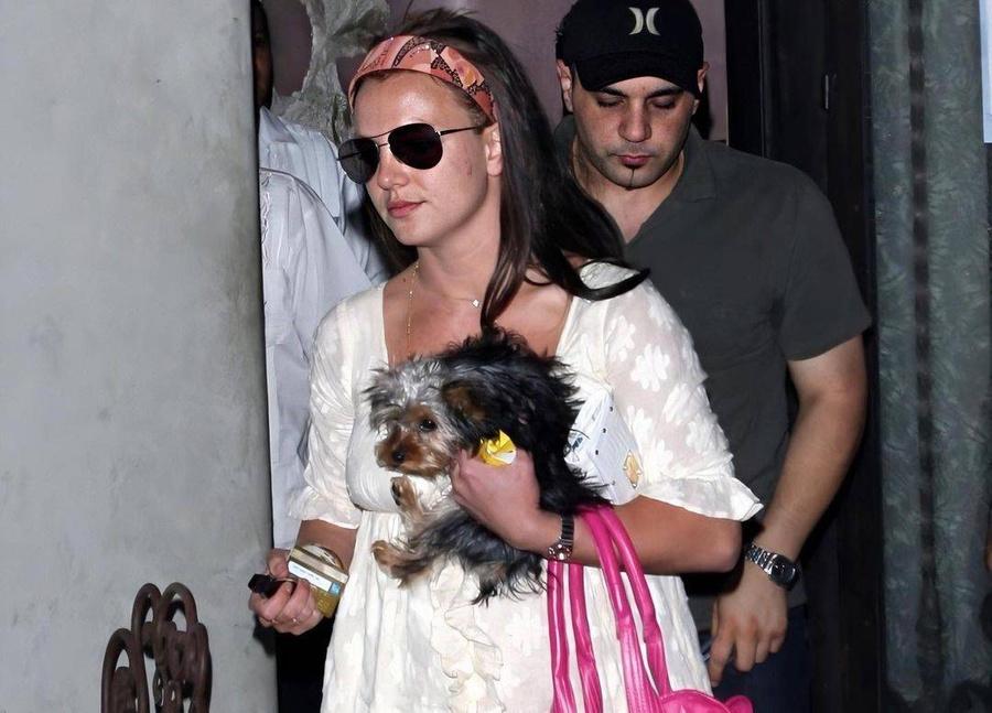 Бритни и Лютфи на заднем плане. Фото © Instagram / britney_with_pups