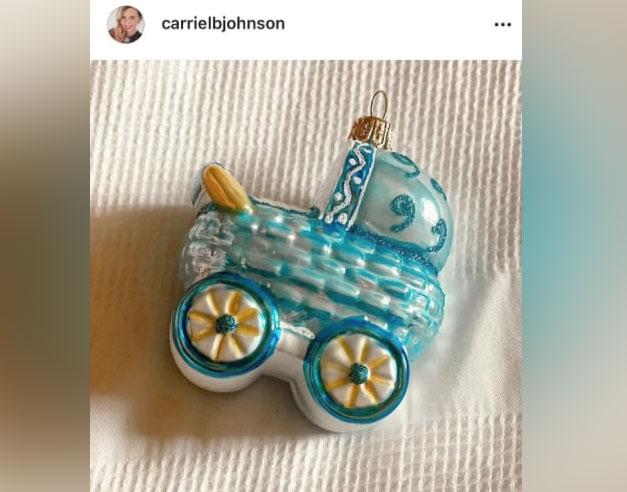 Скриншот c инстаграм-аккаунта Кэрри Джонсон. © instagram