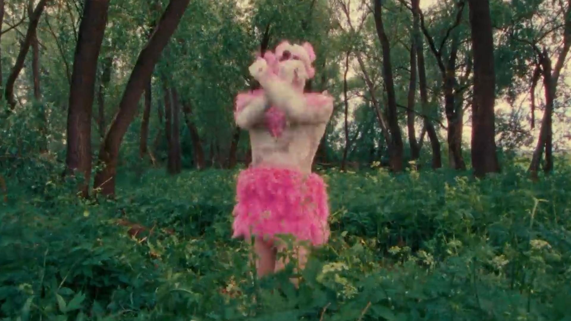 Вышел клип на кавер хита Свиридовой про розового фламинго с участием Гудкова и Понасенкова