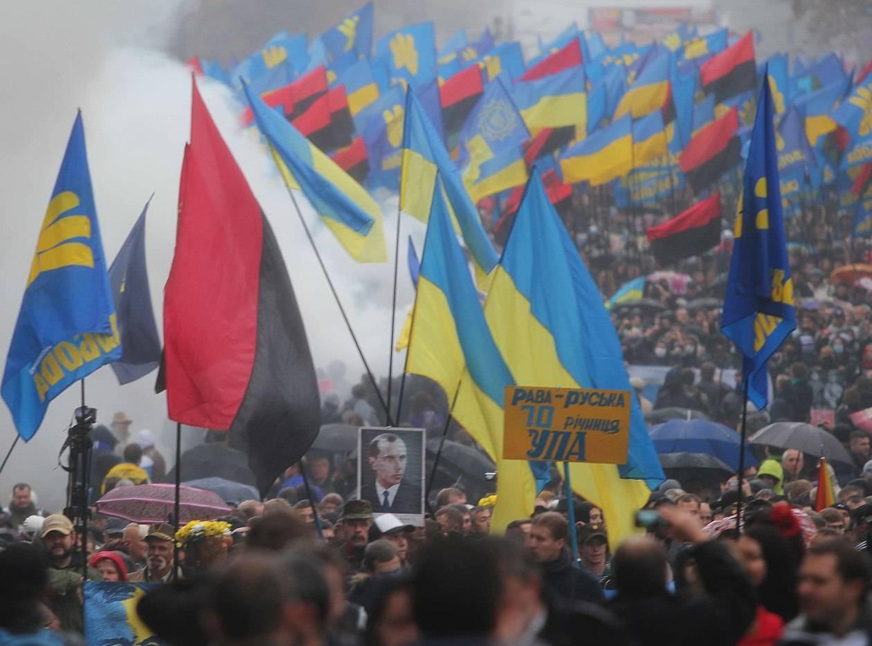 """""""Нужно остановить """"коричневую чуму"""": В Совфеде назвали неонацизм на Украине источником серьёзных проблем для всей Европы"""