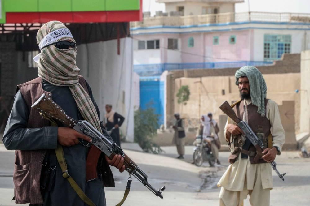 Постараемся искоренить это зло: Талибы пообещали превратить Афганистан в страну без наркотиков