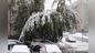 Последствия снегопада в Кемерове. Фото © Соцсети