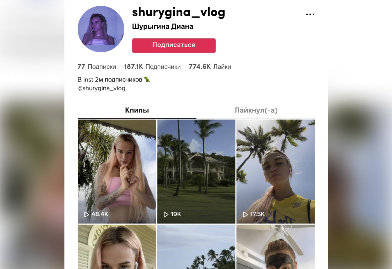 Тикток-аккаунт Дианы. Скриншот © TikTok / shurygina_vlog