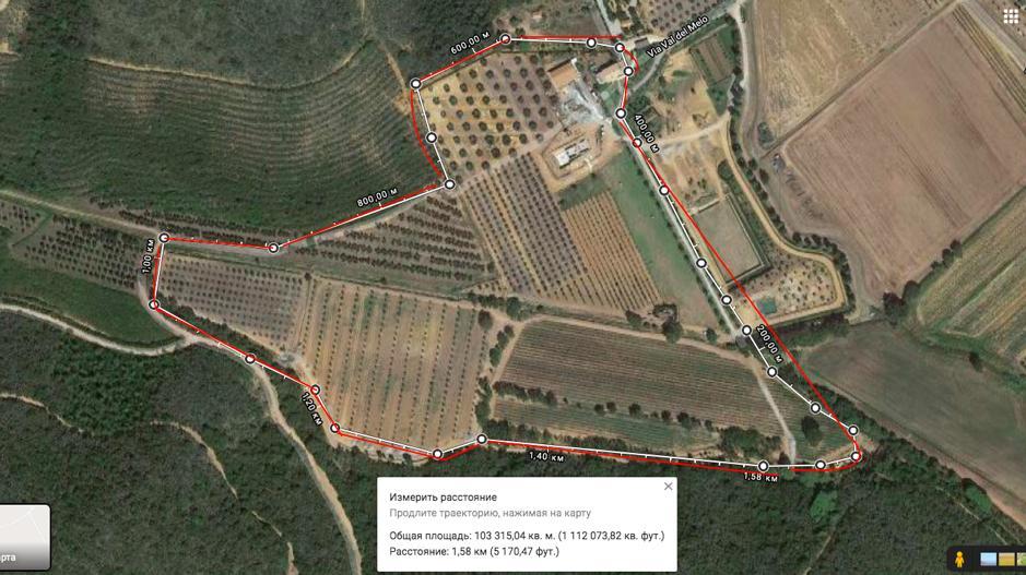 Примерные границы итальянских угодий Плутников. Фото © Google Maps