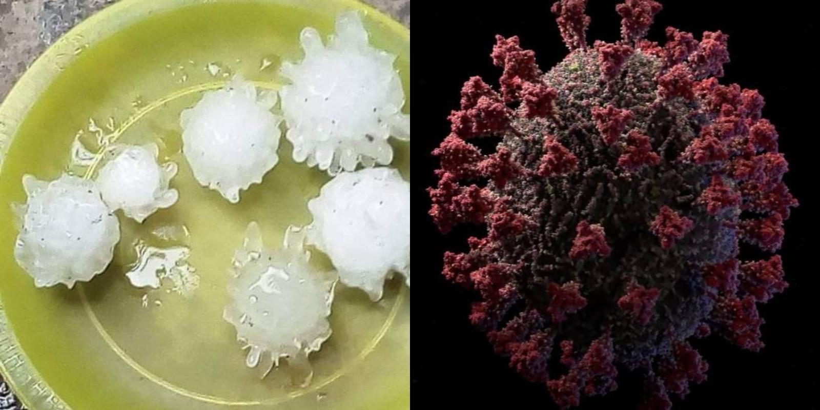 Справа — 3D-модель коронавируса. Фото © Twitter / pachybautista. Скриншот © YouTube / VISUAL SCIENCE