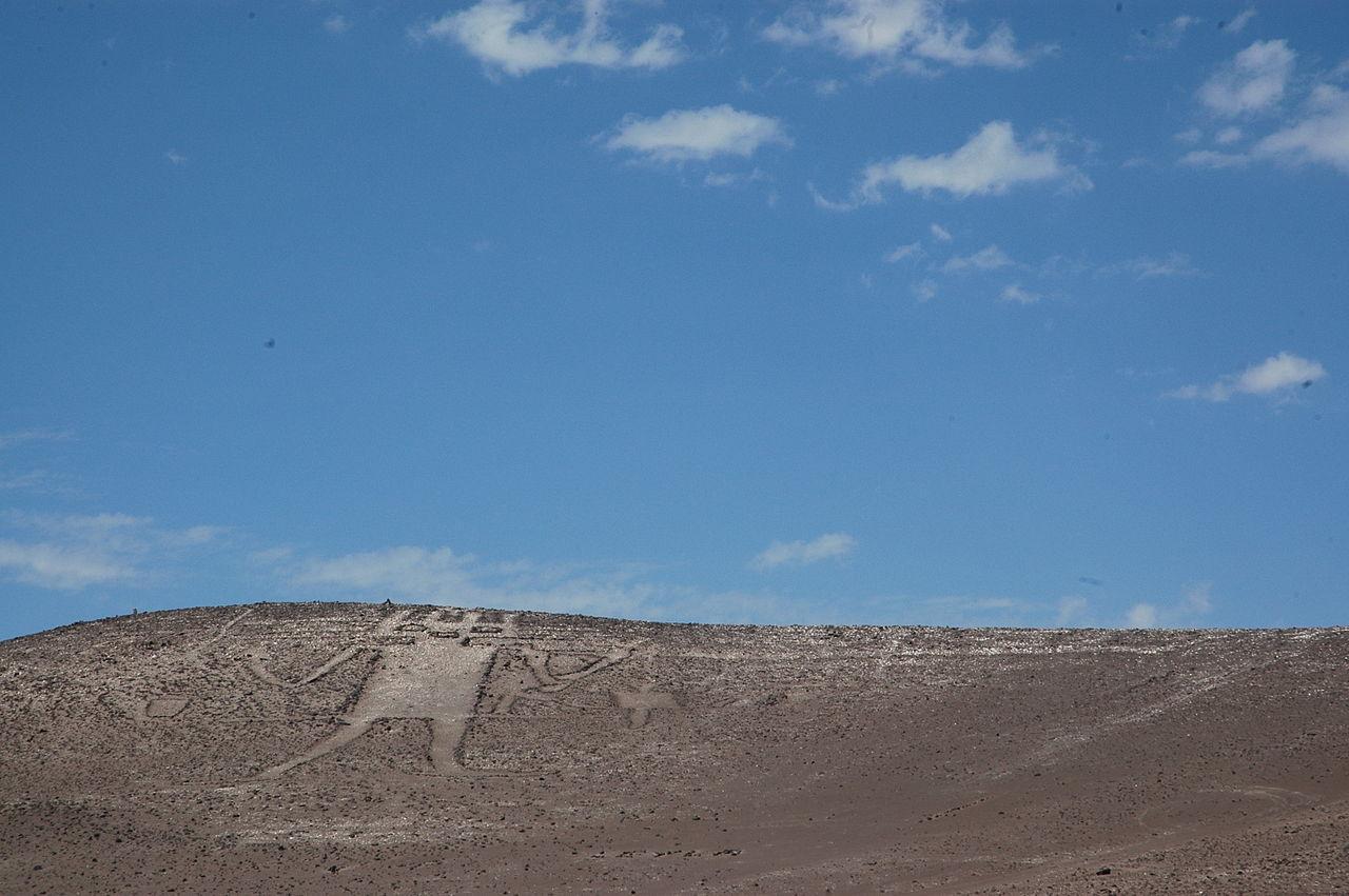 Гигант из пустыни Атакама. Фото © Wikipedia