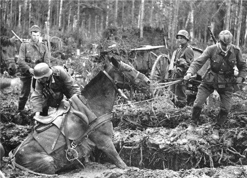Немецкие солдаты в болоте Мясного Бора. Фото © МВД России