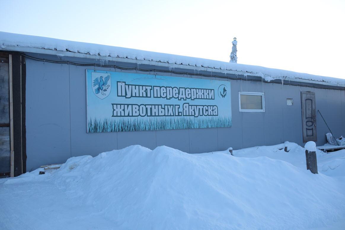 Фото © Sakhaday.ru