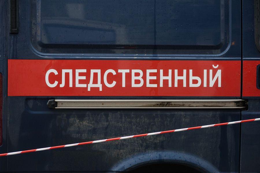 <p>Фото © ТАСС / Сергей Ермохин</p>