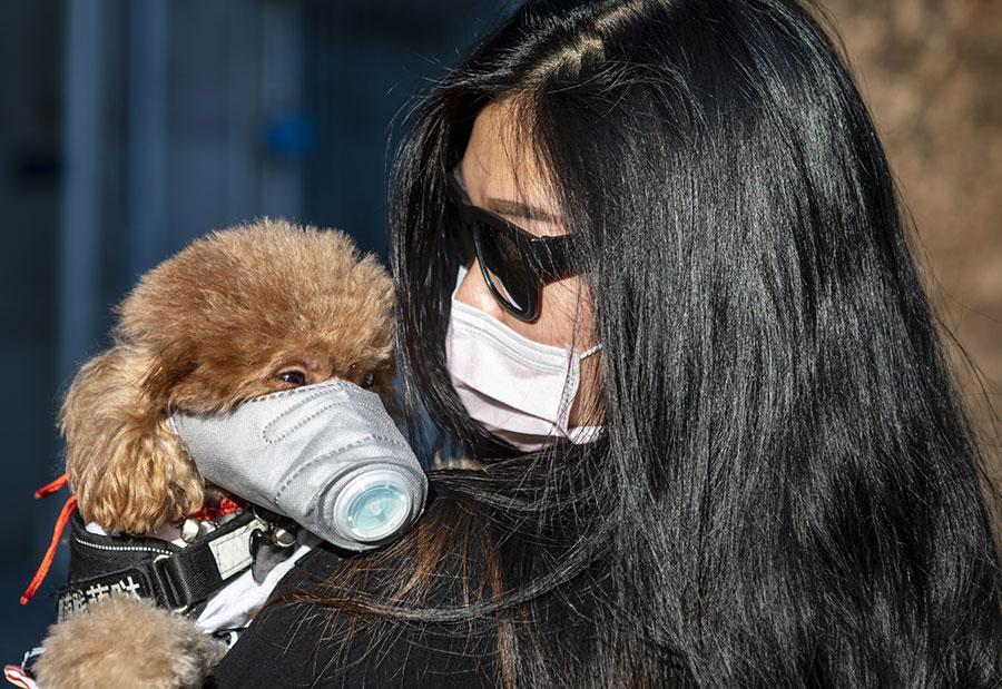 В КНР сообщили, что инкубационный период коронавируса может быть 27 дней