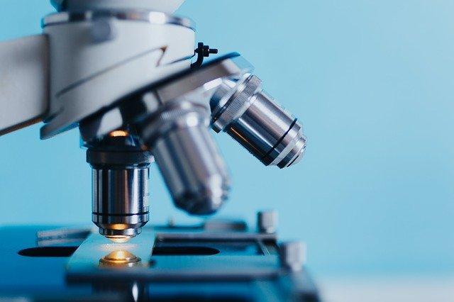 Американские учёные начали тестирование на иммунитет к коронавирусу