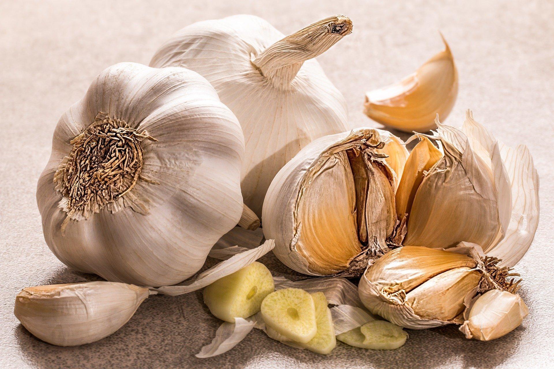 garlic 3419544 1920 1584538619219